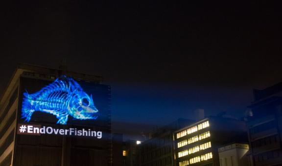 #Endoverfishing: Our Fish Projection in Brussels