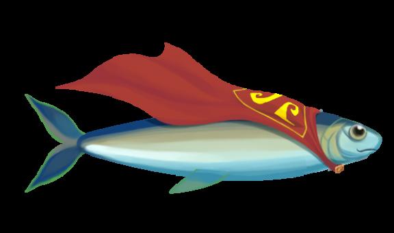 Hero herring